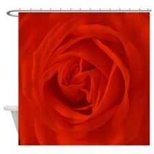 red rose of love Shower Curtain