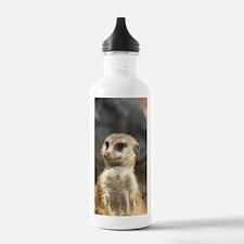 Meercat Water Bottle
