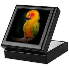 Cute Sun conure parrot Keepsake Box