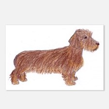 Postcards (Package of 8): Wirehaired Dachshund