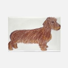 Rectangle Magnet: Wirehaired Dachshund