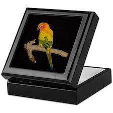 Cool Sun conure parrot Keepsake Box