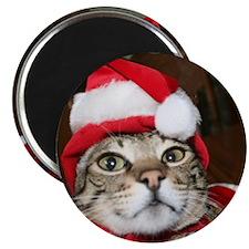Santas Helper Cat Magnets