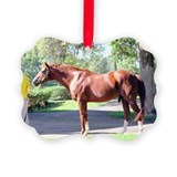 Secretariat Picture Frame Ornaments