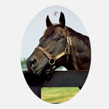 SEATTLE SLEW Ornament (Oval)