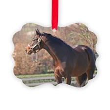 BERNARDINI Christmas Ornament
