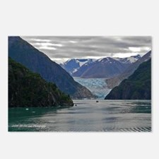 Tracy Arm Glacier Postcards (Package of 8)