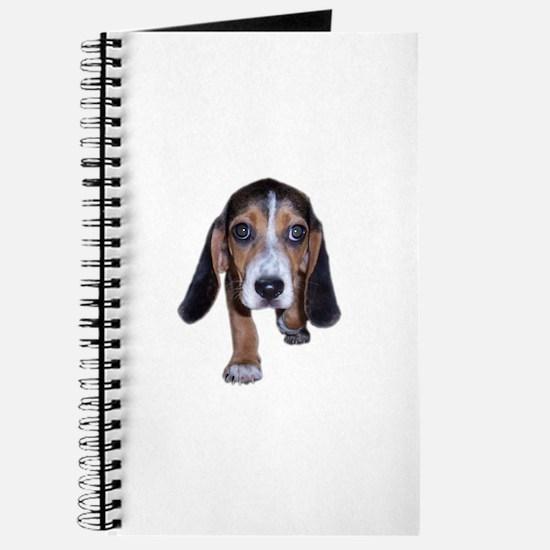 Beagle Puppy Walking Journal