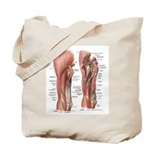 Muscles of the Arm Tote Bag