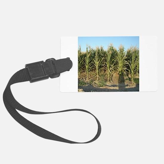 Corn Field Luggage Tag