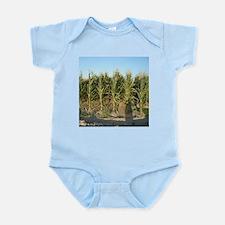 Corn Field Body Suit