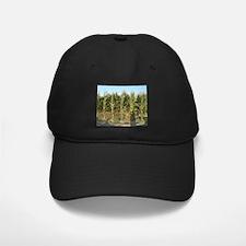 Corn Field Baseball Hat