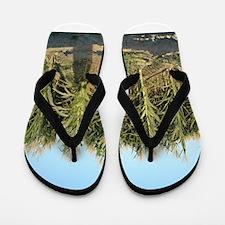 Corn Field Flip Flops