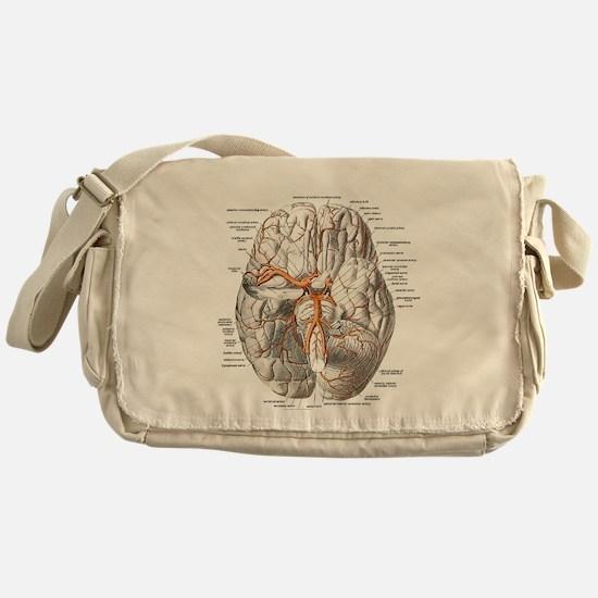 Brain and Blood Vessels Messenger Bag