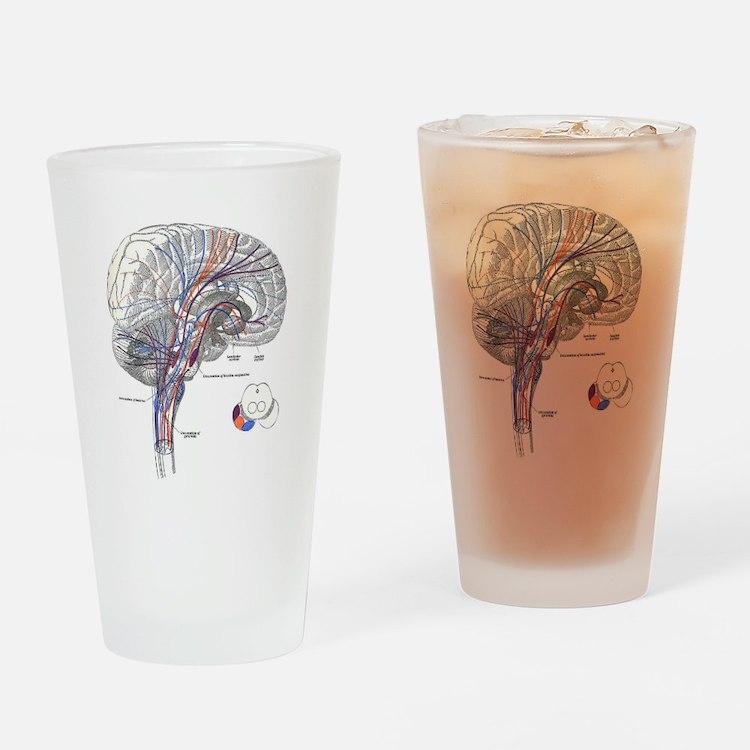 Pathways of the Brain Drinking Glass
