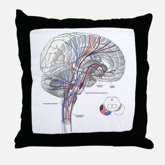Pathways of the Brain Throw Pillow