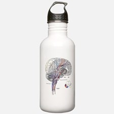 Pathways of the Brain Sports Water Bottle