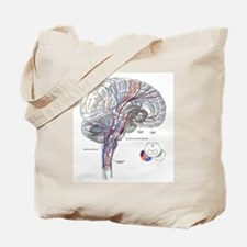 Pathways of the Brain Tote Bag