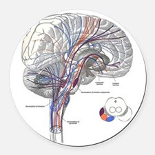 Pathways of the Brain Round Car Magnet