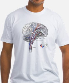 Pathways of the Brain Shirt