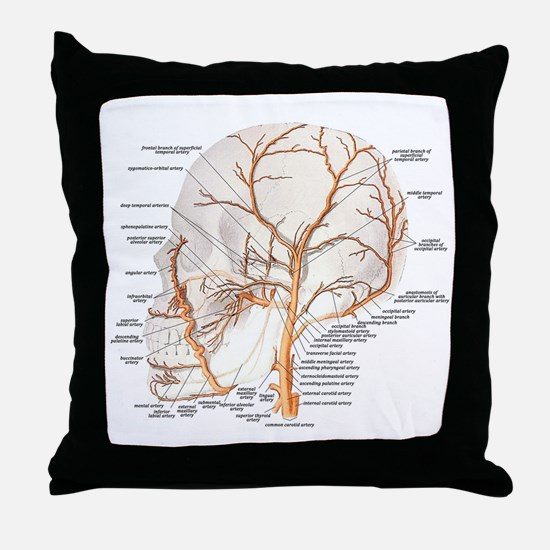 Circulation in the Skull Throw Pillow