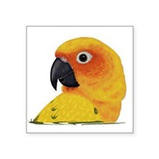 "Sun Conure Square Sticker 3"" x 3"""