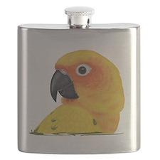 Sun Conure Flask