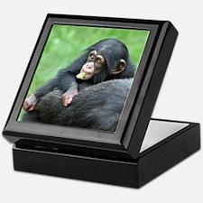 Chimpanzee005 Keepsake Box