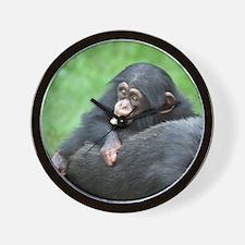 Chimpanzee005 Wall Clock