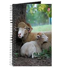 Serene Horned Ewe Lamb Journal