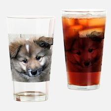 IcelandicSheepdog004 Drinking Glass