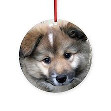 IcelandicSheepdog004 Round Ornament