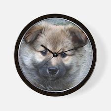 IcelandicSheepdog006 Wall Clock