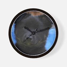 IcelandicSheepdog008 Wall Clock