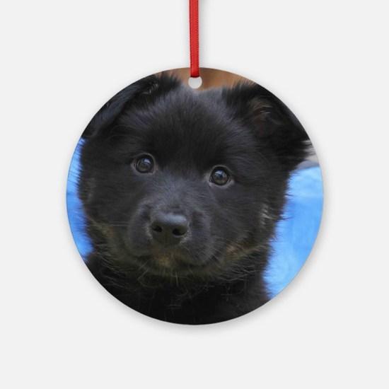 IcelandicSheepdog008 Round Ornament