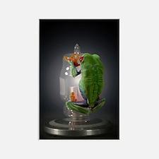 frog Rectangle Magnet