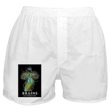 Brains Boxer Shorts