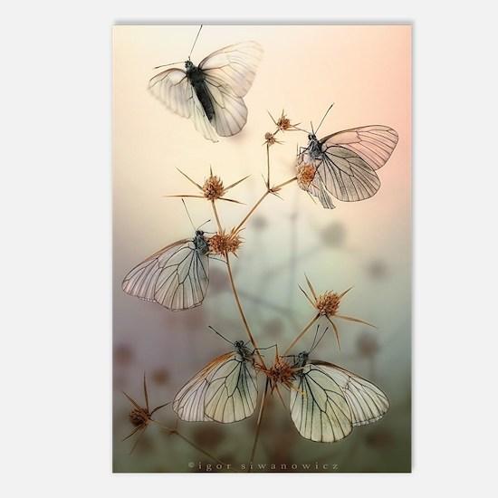Wings Postcards (Package of 8)
