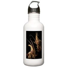 Natural Born Killers Water Bottle