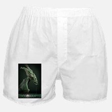 Idolomantis Boxer Shorts
