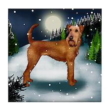 IRISH TERRIER DOG SNOW Tile Coaster