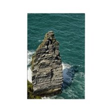 Cliffs of Moher 5 Rectangle Magnet