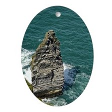 Cliffs of Moher 5 Oval Ornament
