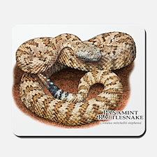 Panamint Rattlesnake Mousepad