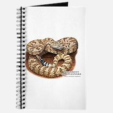Panamint Rattlesnake Journal