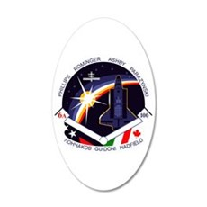 STS-100 Endeavour Wall Decal