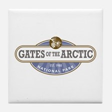 Gates of the Arctic National Park Tile Coaster