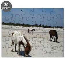 Assateague ponies Puzzle