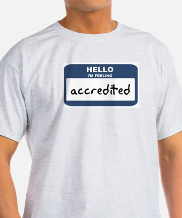 Feeling accredited Ash Grey T-Shirt