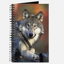 Gray Wolf Journal